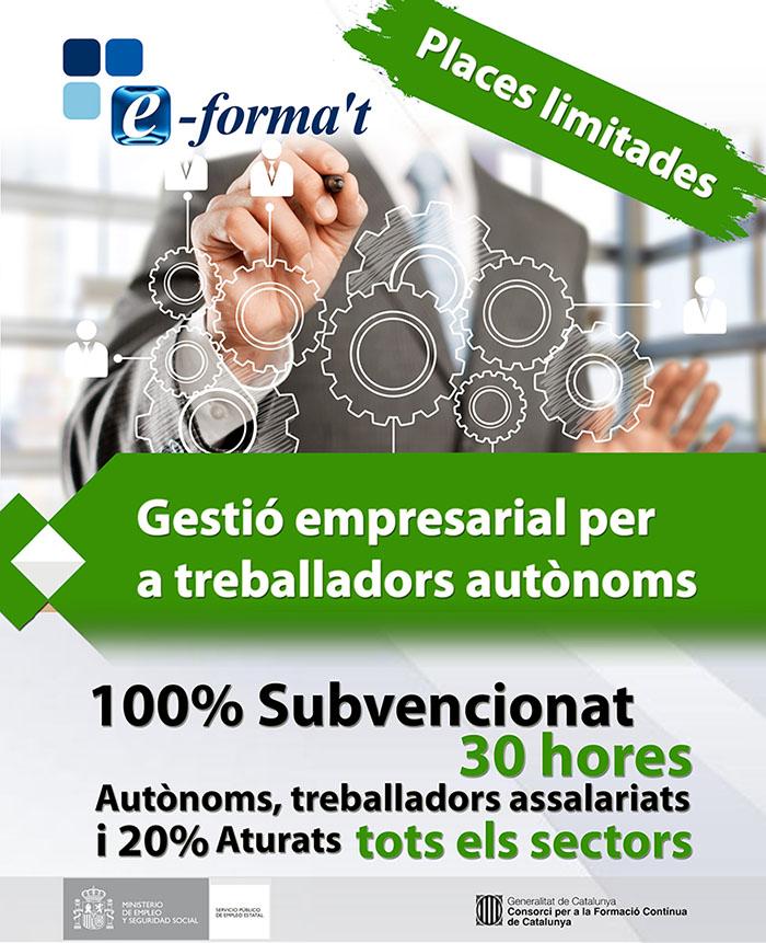Gestió empresarial per a treballadors autònoms